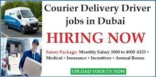 IT and Computers Hardware Company Urgently Required Light Vehicle Delivery Driver in Dubai