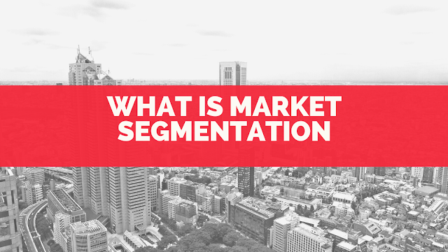 What is Market Segmentation? Definition, bases, types and example?