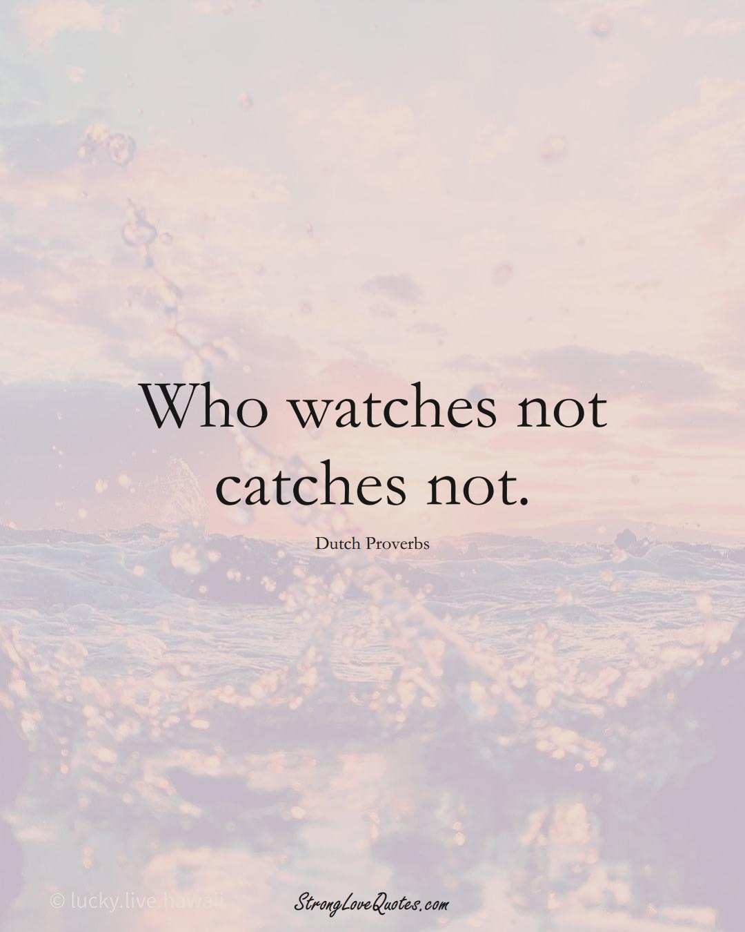 Who watches not catches not. (Dutch Sayings);  #EuropeanSayings