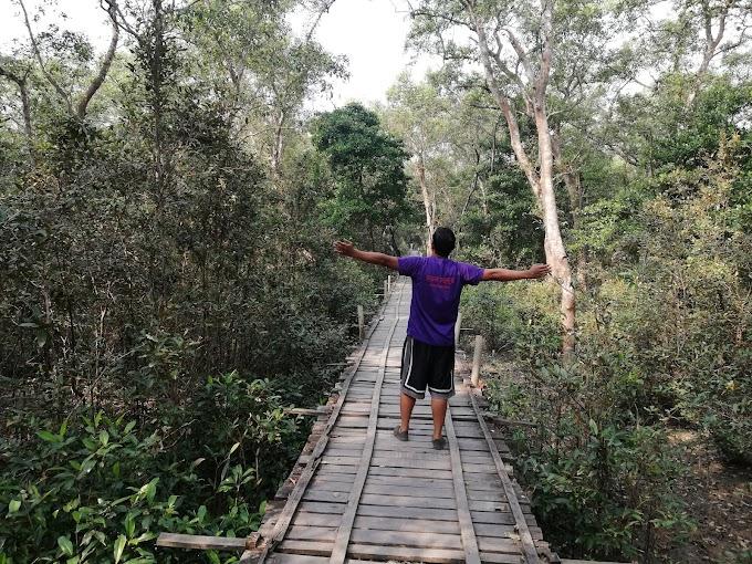 সুন্দরবন ভ্রমণ গাইড । Travel Sundarban   World's Largest Mangrove Forest   Mongla । Khulna
