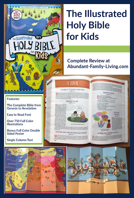 The Illustrated Holy Bible for Kids