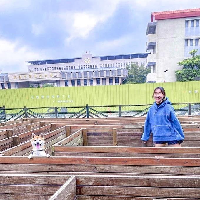桃園 | 福林寵物公園 #超可愛迷宮♥♥毛孩大亂鬥