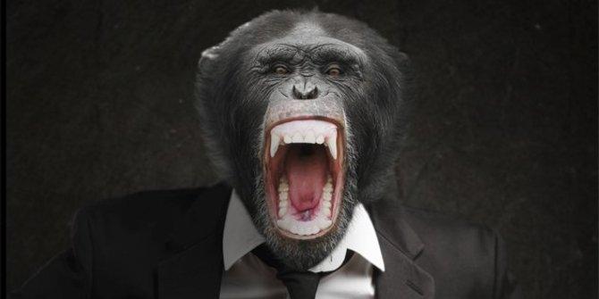 Lima Makhluk Buatan Diprediksi Akan Menggantikan Manusia di Masa Depan