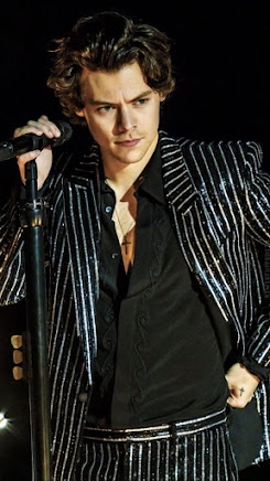 Harry Edward Styles Age, Wife, Biography, Wiki Body Stats, Family, Children, Daughter, Early Life, Salary, Height, Weight, Songs, Net worth & Awards, Education, Career, Favorite Things, achievement.