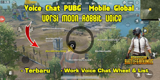 Cara Mengubah Voice Chat PUBG Mobile Global Ke Bahasa Korea Versi Moon Rabbit Voice