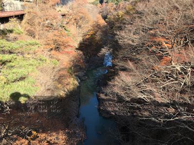 猿橋から見る吾妻渓谷