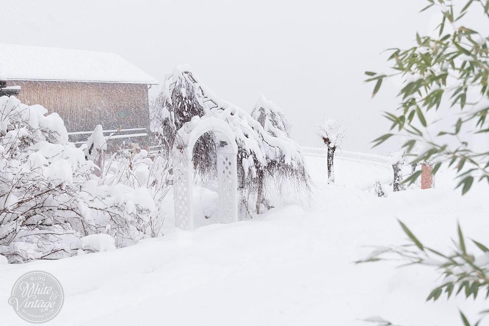 Winterbilder: Schneelandschaft