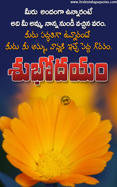 telugu messages on life, best quotes on life, family importance quotes in telugu