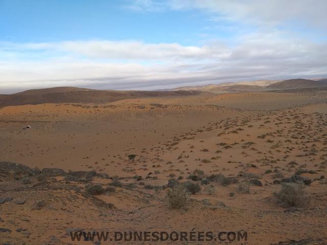 les montagnes-dunes dorées