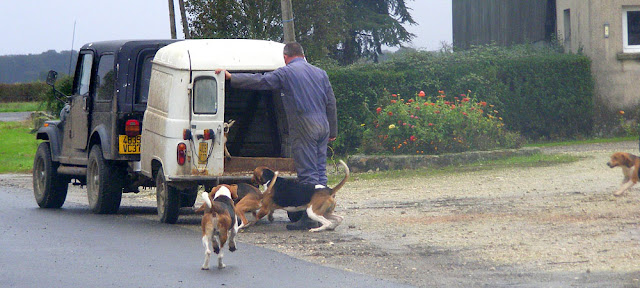 Hounds getting into a homemade trailer. Indre et Loire, France. Photographed by Susan Walter. Tour the   Loire Valley with a classic car and a private guide.