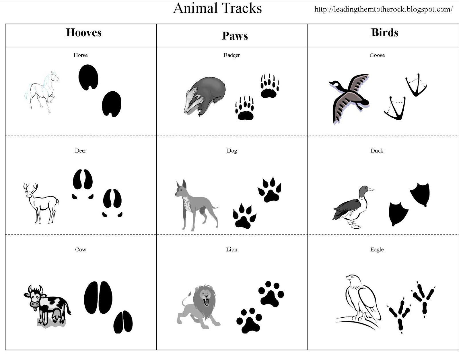 graphic relating to Free Printable Animal Tracks named Top Them In direction of THE ROCK : Animal Investigation- Animal Songs