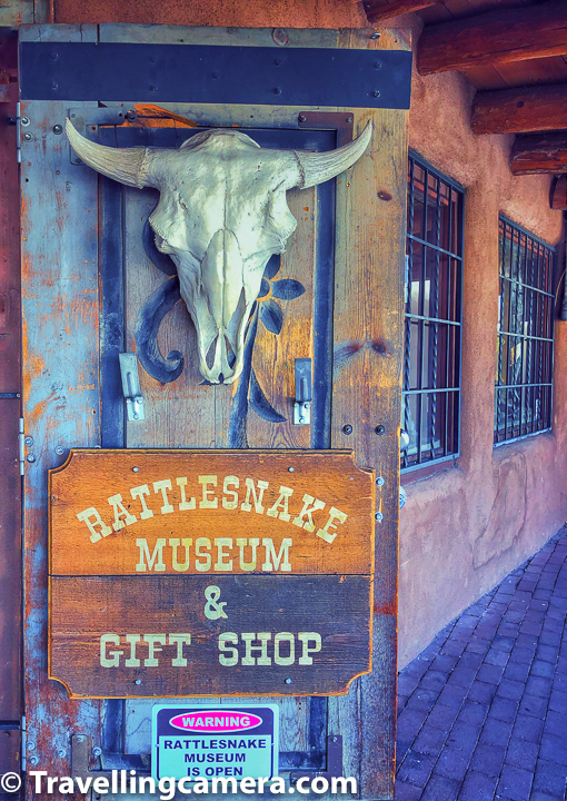 Above photograph shows the outer part of Rattlesnake Museum in Albuquerque Old Town.