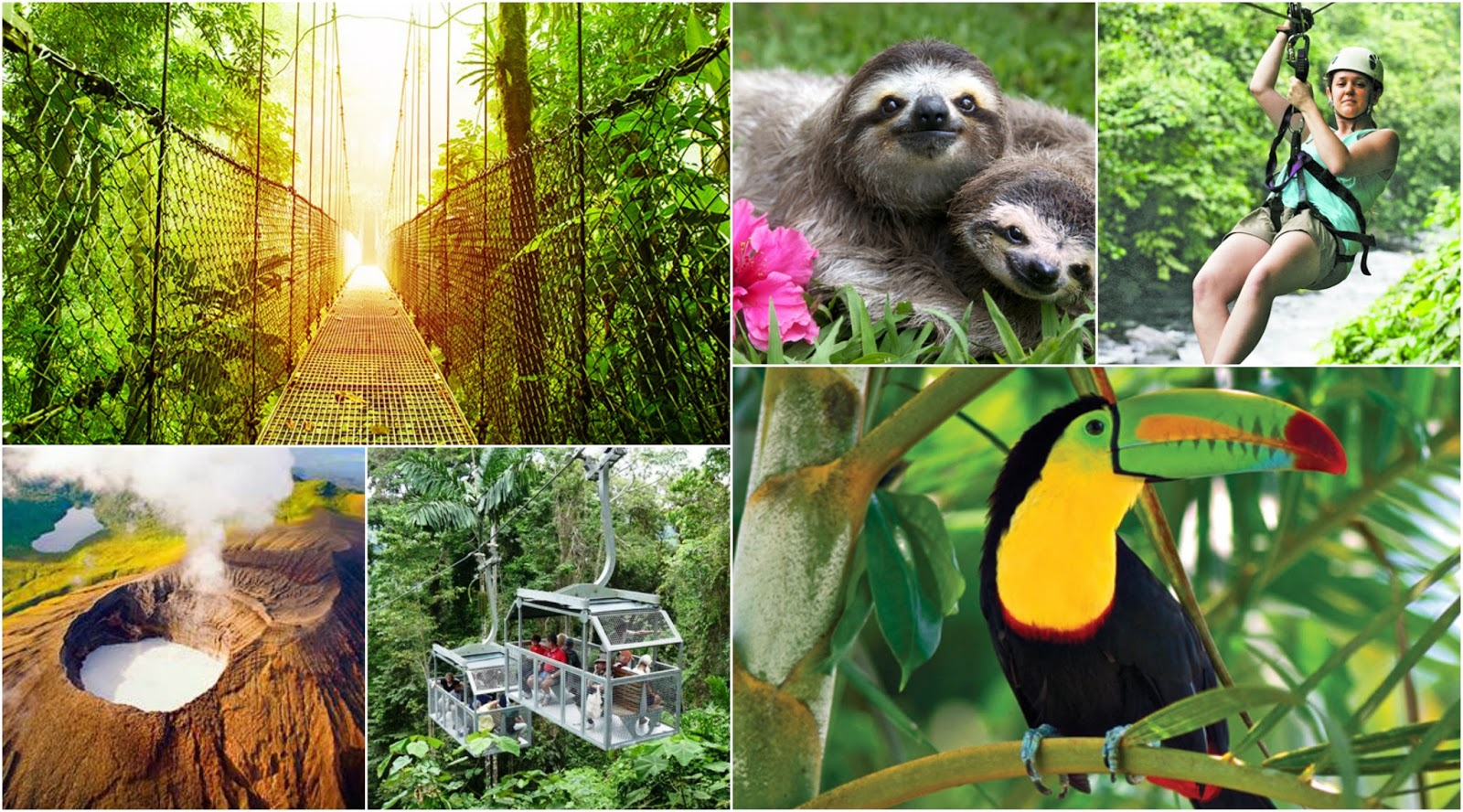ecotourism in the galapagos islands costa rica San jose, costa rica is 834 miles from galapagos islands panama city, panama - tocumen international airport is the most popular connection for one stop flights between san jose, costa rica and galapagos islands.