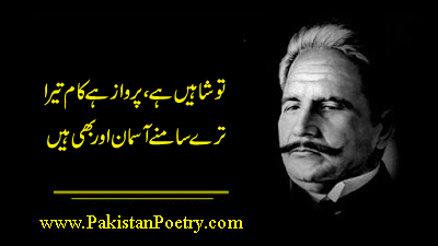 Best Collection of Allama Iqbal Poetry       (urdu and English)