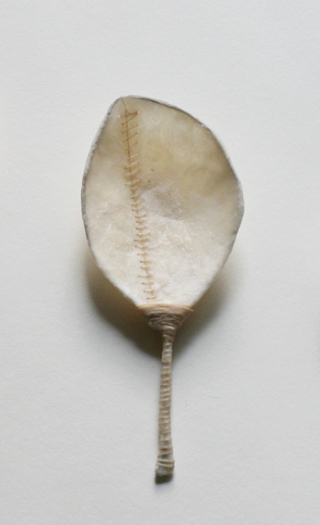 Stitched [2010], Wounded series, ongoing. wax, string, paper & wire.