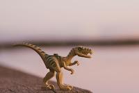 Dinosaur Model - Photo by Daniel Cheung on Unsplash
