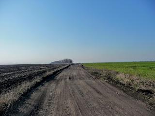 Лысовка, Покровский р-н, Сельскохозяйственные поля