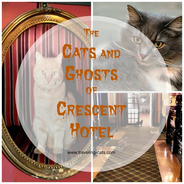 ghosts of crescent hotel