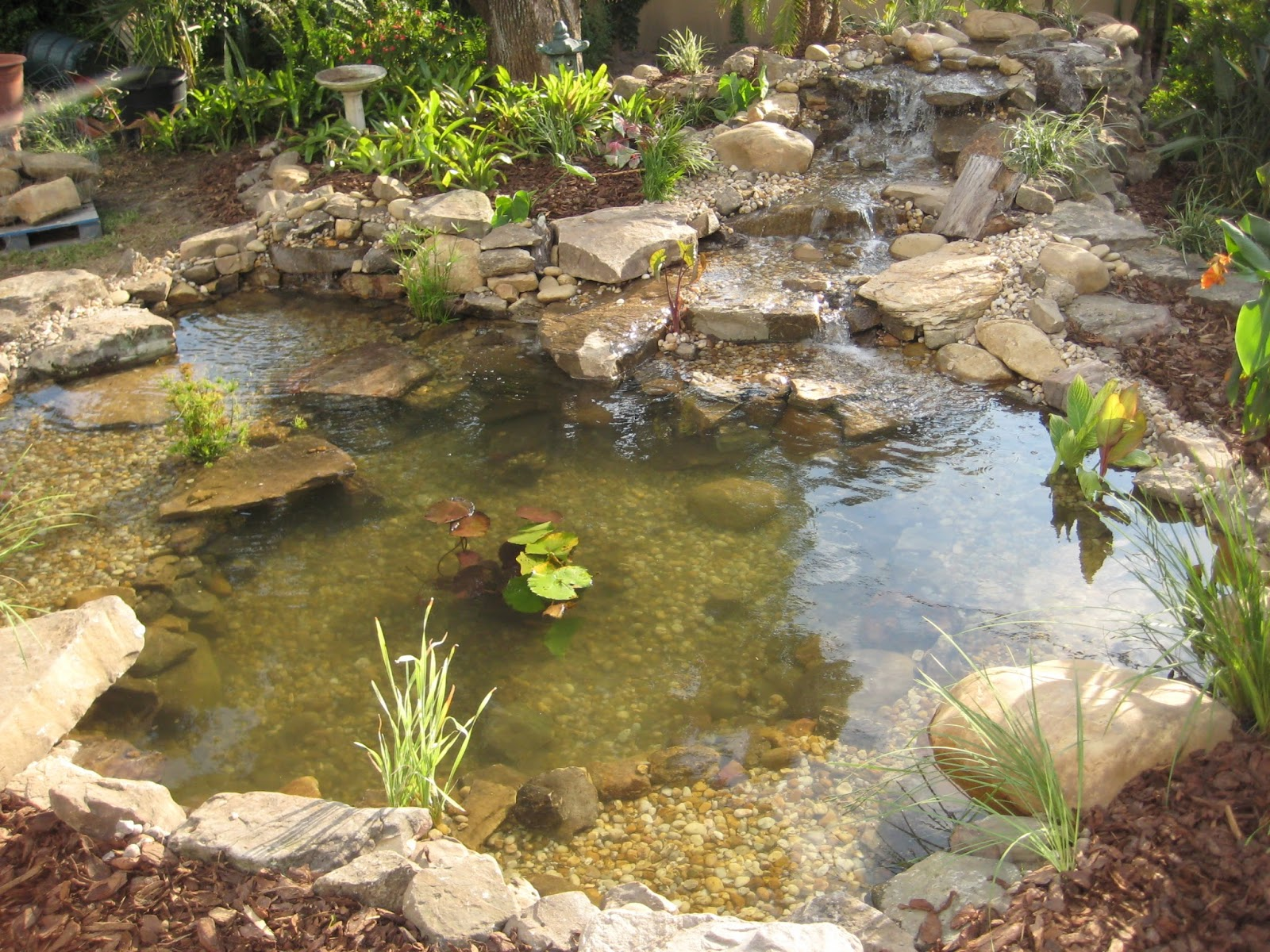 Lovely Ecosystem Ponds Can Be Easy To Understand, At Pondtastic Water Gardens, We  Have Complete Knowledge Of What Components Go Into A Basic, ...