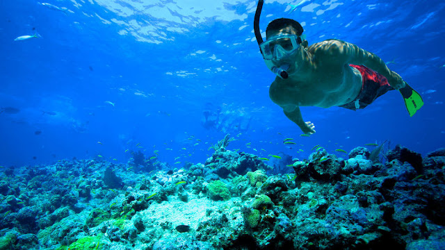 Tips Snorkeling Pertama Kali Untuk Pemula