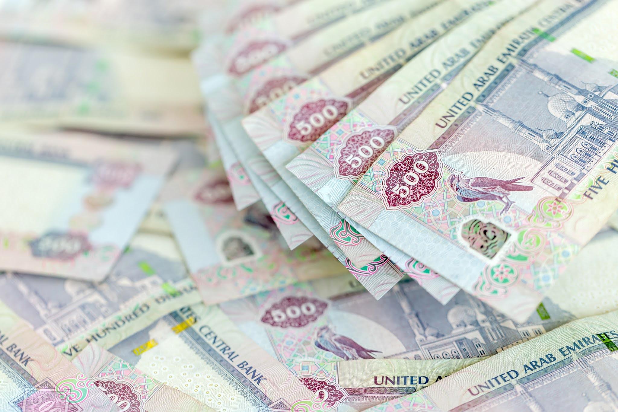 """192 مليون درهم قيمة الحوافز الاقتصادية لموسسة """"محمد بن راشد لتنمية المشاريع"""" في 2020"""