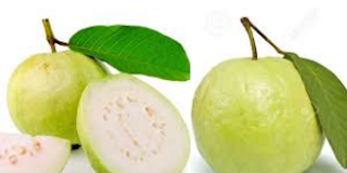 Guava,Amrud Fruit meaning in English, hindi, telugu,tamil,marathi,Gujrathi,Malayalam,Kannada
