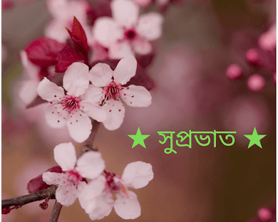 Good morning flower Wishes in Bengali