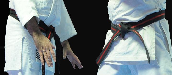 Grados y certificaciones de Seibukan Budo