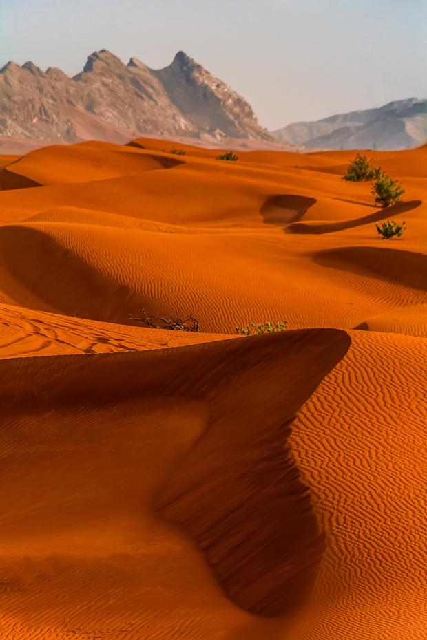 Pre-Money Valuation - Desert in Dubai, United Arab Emirates