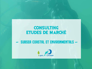 Etudes des marches (Subsea Coastal and environmentals) projects