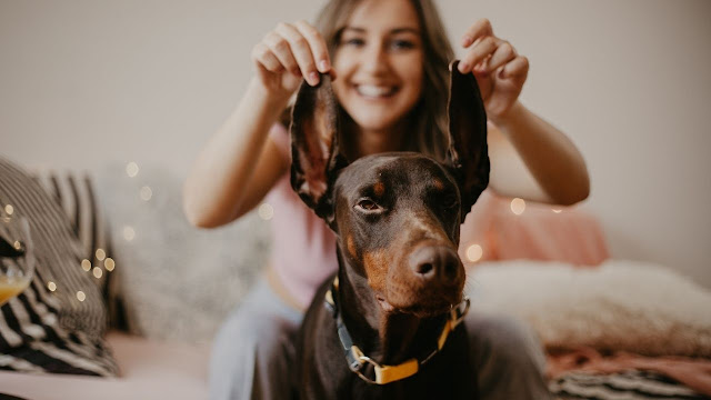 Are Dobermans Good with Kids?