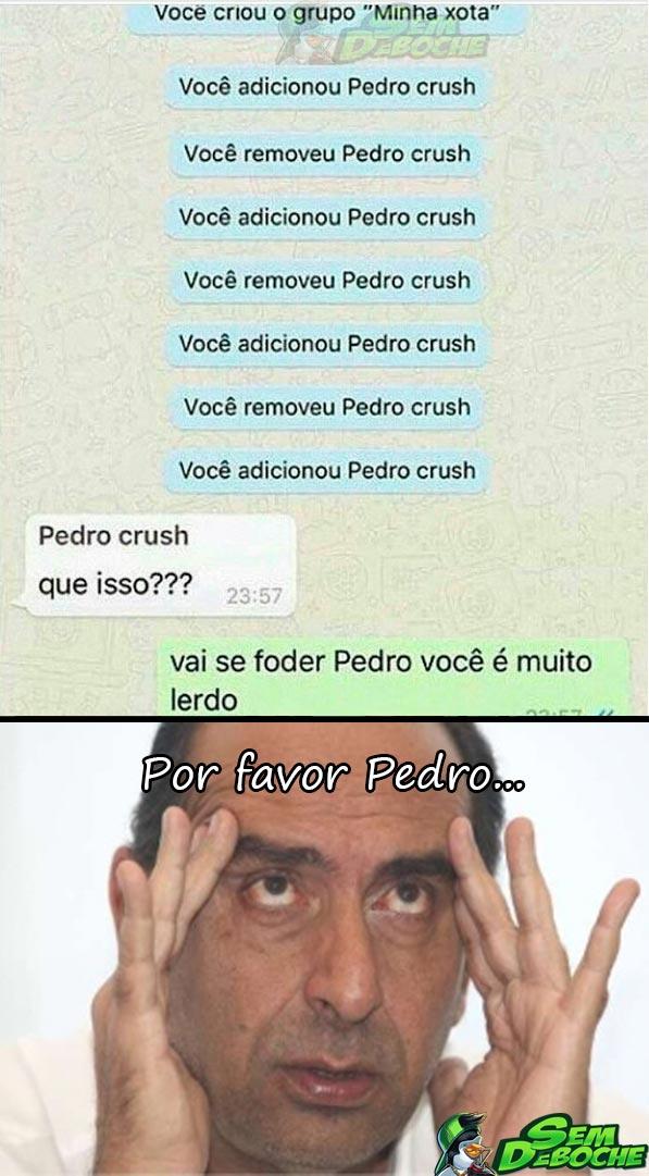DEIXA DE SER LERDO, PEDRO