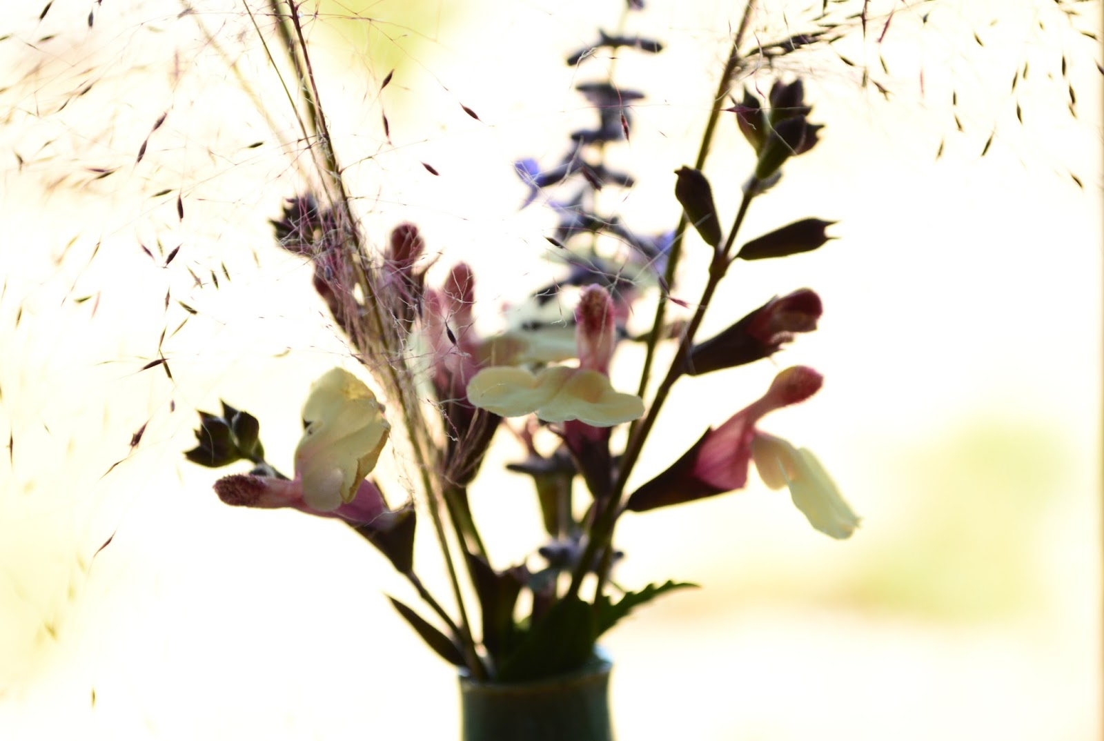 Autumn Sage, Pink Muhly, Flower arrangement, Monday Vase
