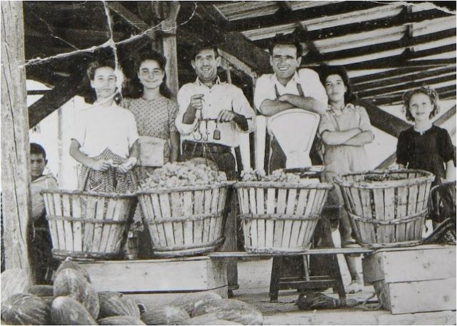 leganes_bn_V_Abuelohara_años40_puesto_verduras