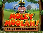 Slot Yggdrasil Moley Moolah