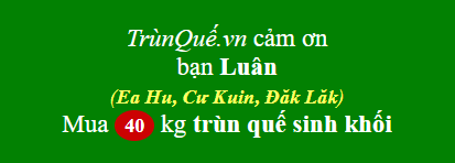 Trùn quế xã Ea Hu