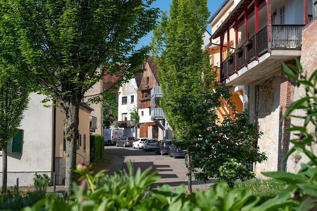 Premiumwanderweg DonAUwald | Etappe 3 von Gundelfingen nach Dillingen 20