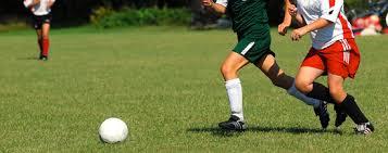 Curso en Enseñanza y Animación Sociodeportiva, deporte y salud