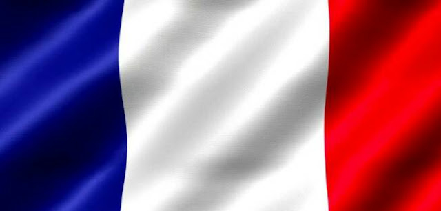 What is the official language of France?