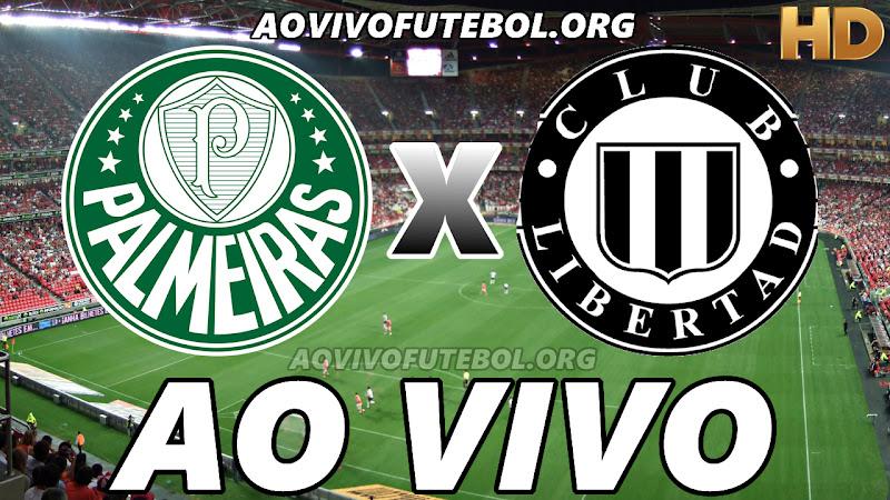 Palmeiras x Libertad Ao Vivo na TV HD