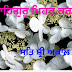 Top 10 SAT SHRI AKAL JI GOOD MORNING Images greeting Pictures, Photos for Whatsapp