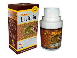 ibu-menyusui-lechitin-natural-nusantara-nasa-distributor-jual-beli-stockis-agen-jogjakarta-herbal-alami-kesehatan