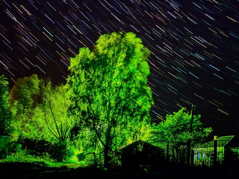 дерево на фоне звёздного неба