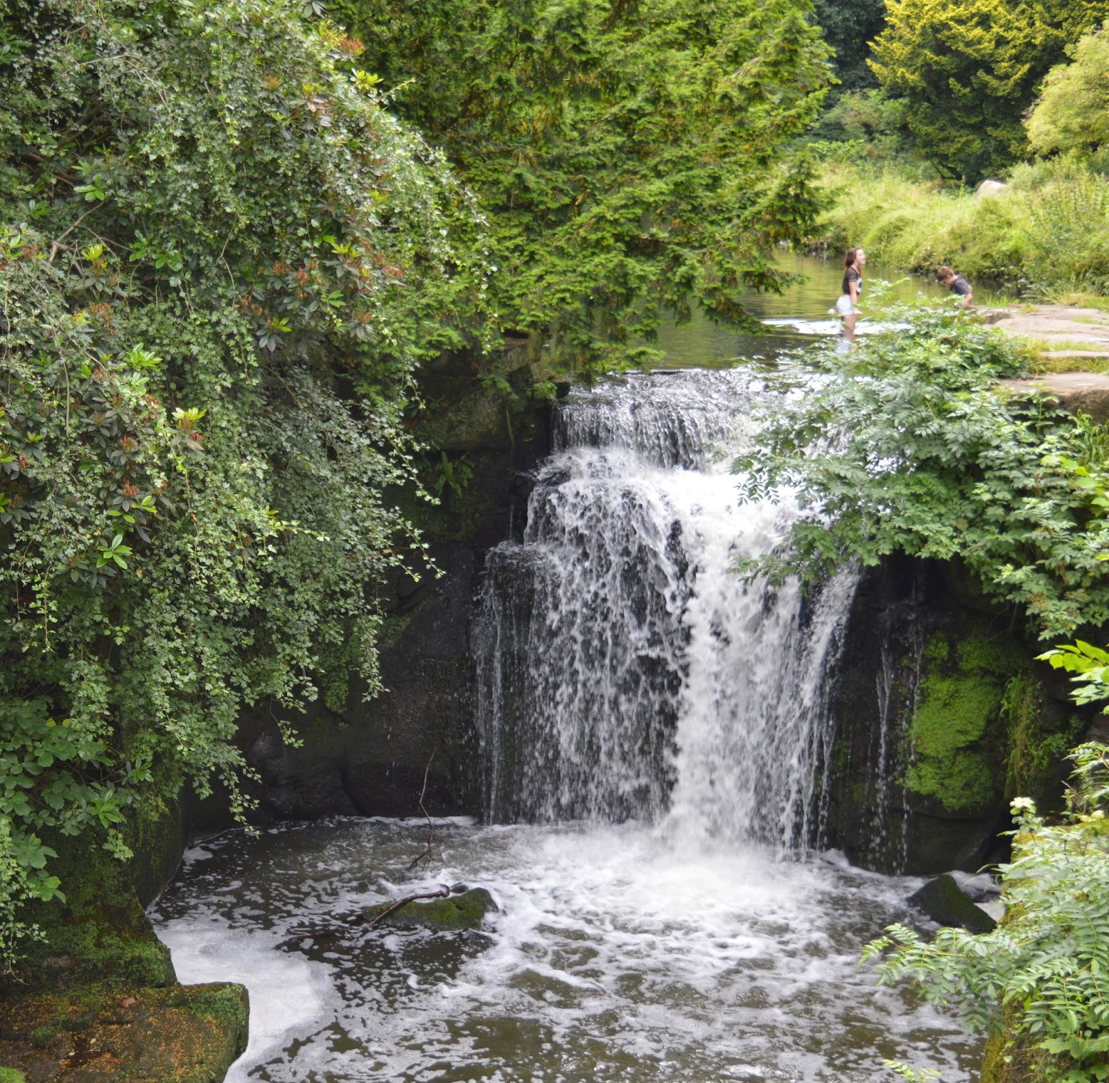 11 Fun Date Ideas in Newcastle Upon Tyne - Jesmond Dene Waterfall