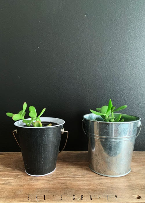 Galvanized bucket and chalkboard to hold small house plants.