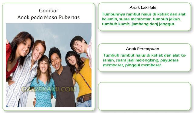 jawaban gambar pubertas kelas 6 tema 6 halaman 114