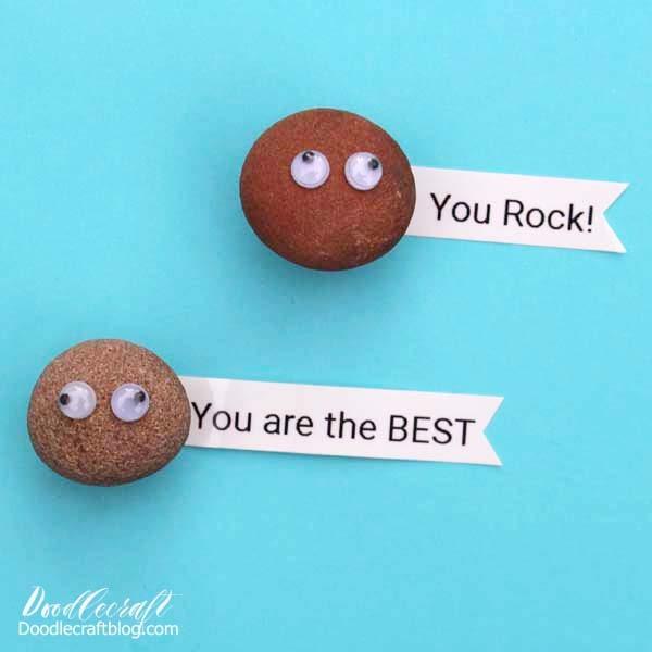 Rock Pet Magnets for Locker Organization back to school 5 minute craft DIY