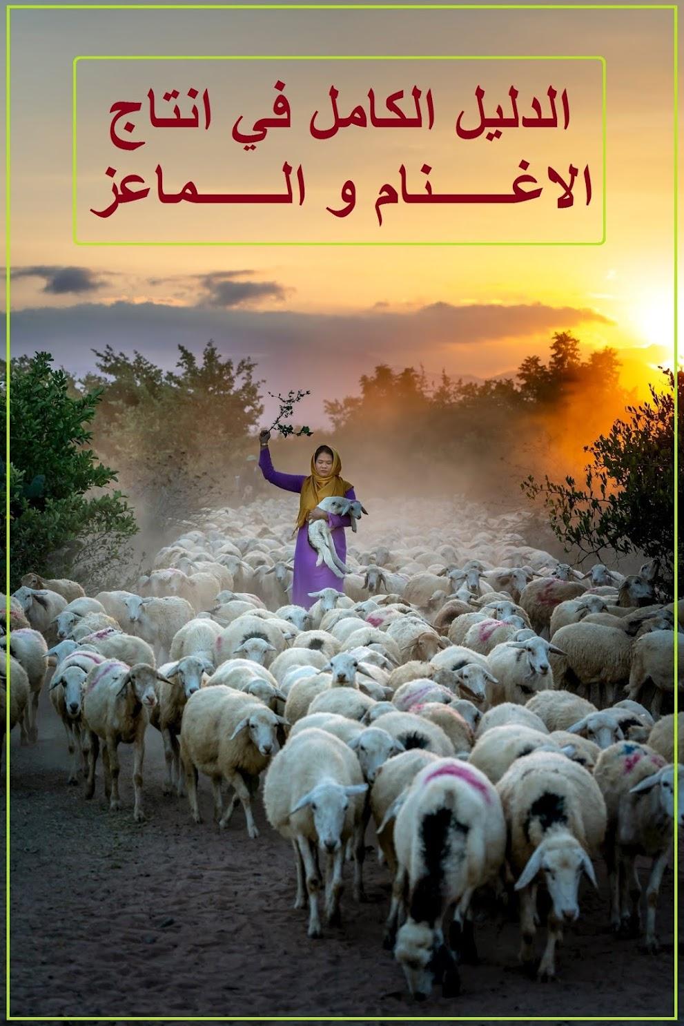 كتاب : الدليل الكامل في انتاج الاغنام و الماعز