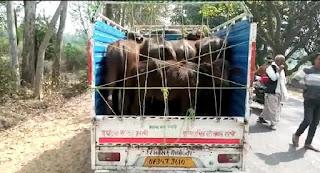 सीतापुर : मूल उद्देश्यों से भटककर पीआरबी 112 की पुलिस कर रही अवैध वसूली
