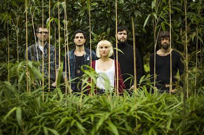 'COMIDA PARA INSECTOS' es el single del nuevo disco de GRISES